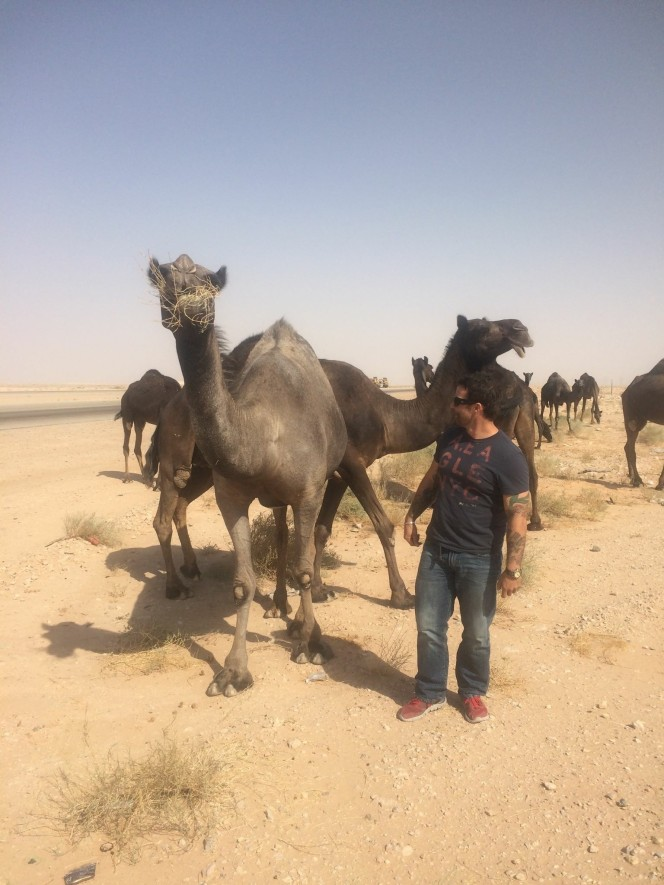 Trevor Warren with camels in Saudi Arabia
